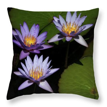 Trio Of Purple Water Lilies Throw Pillow by Sabrina L Ryan