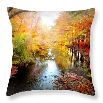 Trip Through My Mind Throw Pillow by Diana Angstadt