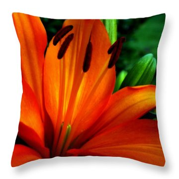 Tropical Passion Throw Pillow by Karen Wiles