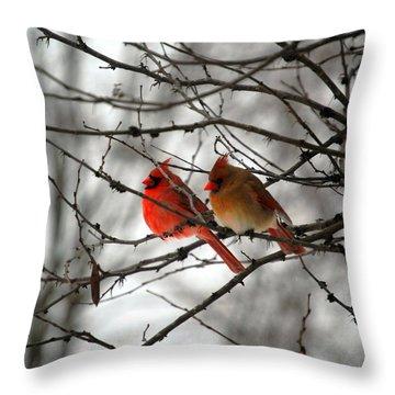 True Love Cardinal Throw Pillow by Peggy  Franz