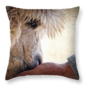 Trust Throw Pillow by Tamyra Ayles