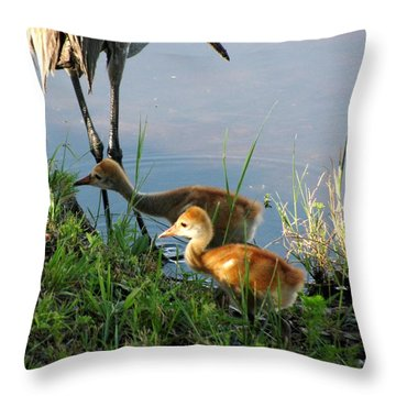 Trying To Catch... Throw Pillow by Zina Stromberg