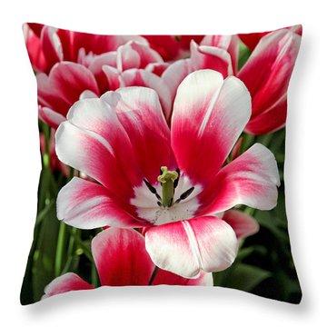 Tulip Annemarie Throw Pillow by Jasna Buncic