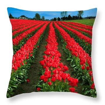 Tulip Cornucopia Throw Pillow by Inge Johnsson