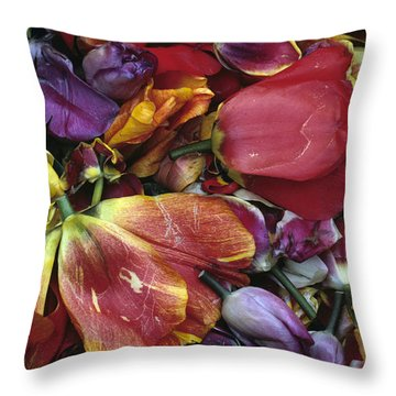 Tulip Heads Throw Pillow by Jim Corwin