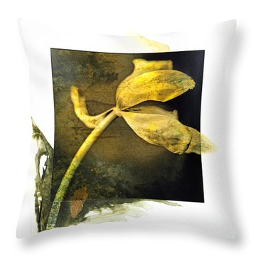 Tulip On A Textured Brown Background. Throw Pillow by Bernard Jaubert