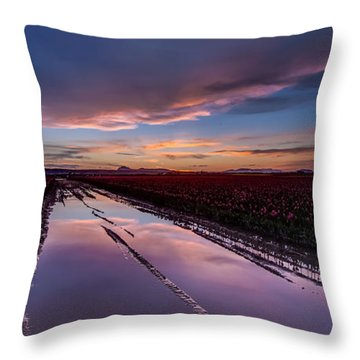 Tulips And Purple Skies Throw Pillow by Mike Reid