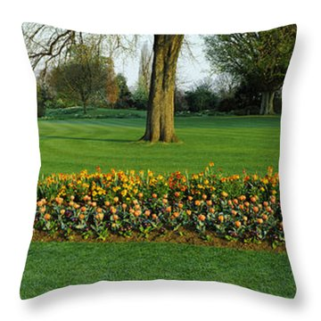Tulips In Hyde Park, City Throw Pillow by Panoramic Images
