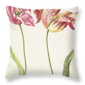 Tulips Throw Pillow by Nicolas Robert