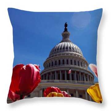 Tulips With A Government Building Throw Pillow by Panoramic Images