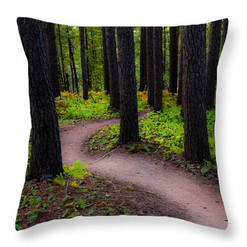 Turning Throw Pillow by Mary Amerman