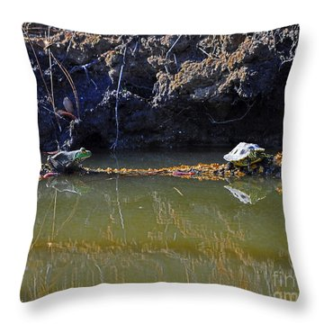 Turtle And Frog On A Log Throw Pillow by Al Powell Photography USA