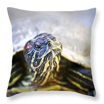 Turtle Throw Pillow by Elena Elisseeva
