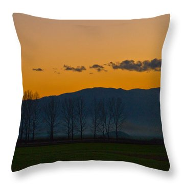 Twilight Mist Throw Pillow by Eti Reid