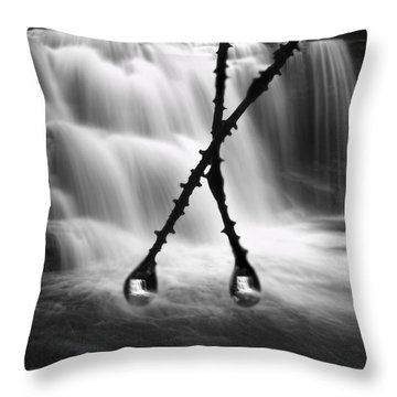 Twin Reflections Throw Pillow by Dan Friend