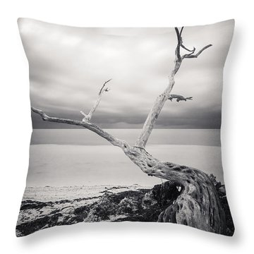 Twisted Throw Pillow by Adam Romanowicz
