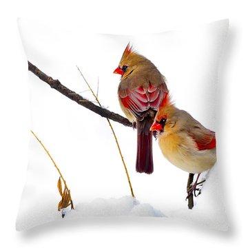 Two Females Posing As Cardinals Throw Pillow by Randall Branham