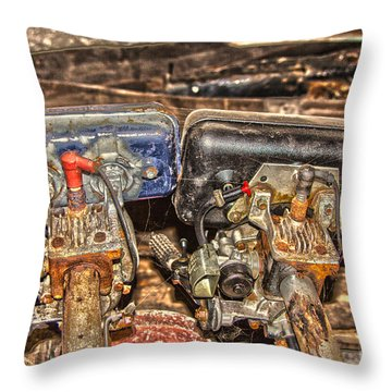 Two Old Seagulls  Throw Pillow by Brian Roscorla