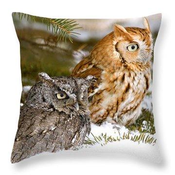 Two Screech Owls Throw Pillow by John Pitcher
