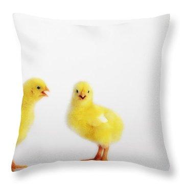 Two Yellow Baby Chicks Chirpingbritish Throw Pillow by Thomas Kitchin & Victoria Hurst