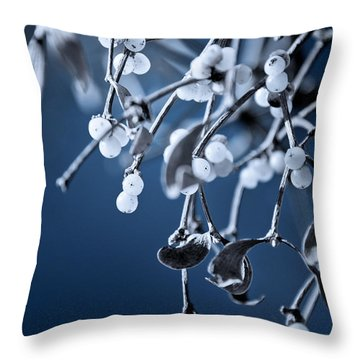 Under The Mistletoe Throw Pillow by Loriental Photography