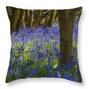 Underneath The Trees Throw Pillow by Svetlana Sewell