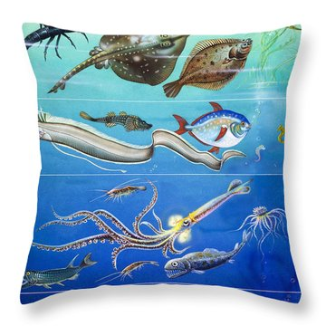 Underwater Creatures Montage Throw Pillow by English School