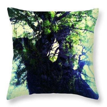 Untitled -tree Star Throw Pillow by Juliann Sweet