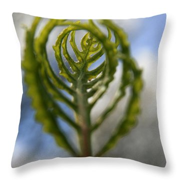 Unwrapped Throw Pillow by Neal  Eslinger