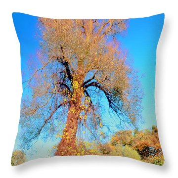 Up Rooted Tree Throw Pillow by Kathleen Struckle