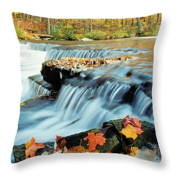 Upper Chittenango Falls Throw Pillow by Oscar Gutierrez