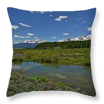 Upper Management Throw Pillow by Jeremy Rhoades