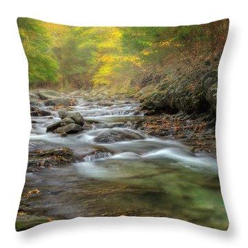 Upstream Fog Throw Pillow by Bill Wakeley