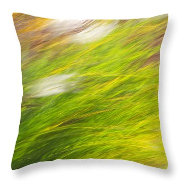 Urban Nature Fall Grass Abstract Throw Pillow by Christina Rollo