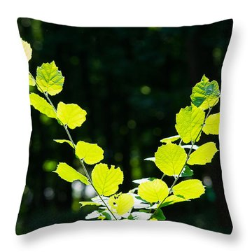 V For Victory - Featured 3 Throw Pillow by Alexander Senin