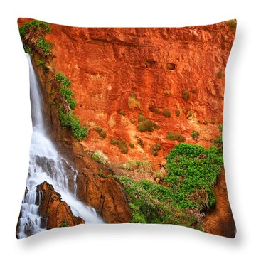 Vaseys Paradise Twin Falls Throw Pillow by Inge Johnsson
