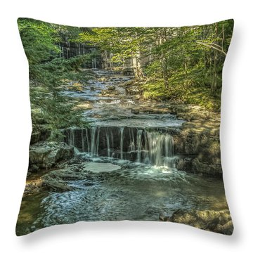 Vaughan Woods Stream Throw Pillow by Jane Luxton