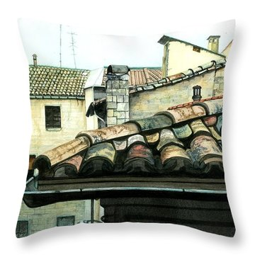 View From The Top Throw Pillow by Barbara Jewell