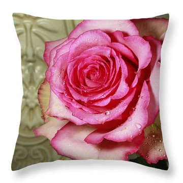 Vintage Beauty Rose Throw Pillow by Inspired Nature Photography Fine Art Photography