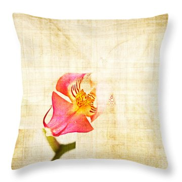 Vintage White Orchid Throw Pillow by Delphimages Photo Creations