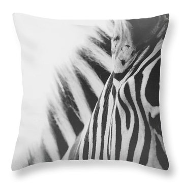 Visions Throw Pillow by Carrie Ann Grippo-Pike