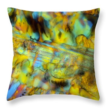 Volcanic Glass Throw Pillow by Tom Phillips