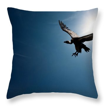 Vulture Flying In Front Of The Sun Throw Pillow by Johan Swanepoel