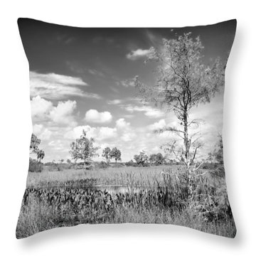 Wagon Wheel Road Bw Throw Pillow by Rudy Umans