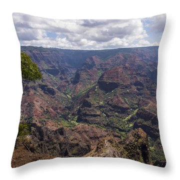 Waimea Canyon 5 - Kauai Hawaii Throw Pillow by Brian Harig