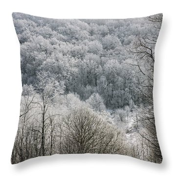 Waiting Out Winter Throw Pillow by John Haldane