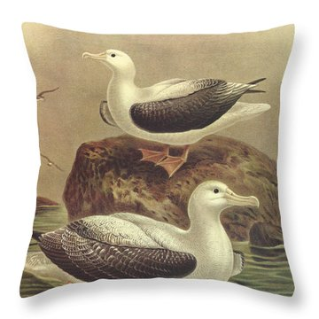 Wandering Albatross Throw Pillow by J G Keulemans