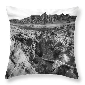 Wasteland Throw Pillow by Mike McGlothlen