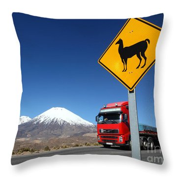Watch Out For Llamas Throw Pillow by James Brunker