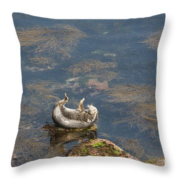 Watching You Watching Me Throw Pillow by Anne Gilbert